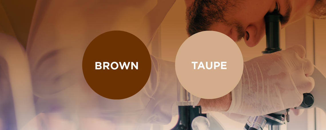 Brown and Taupe